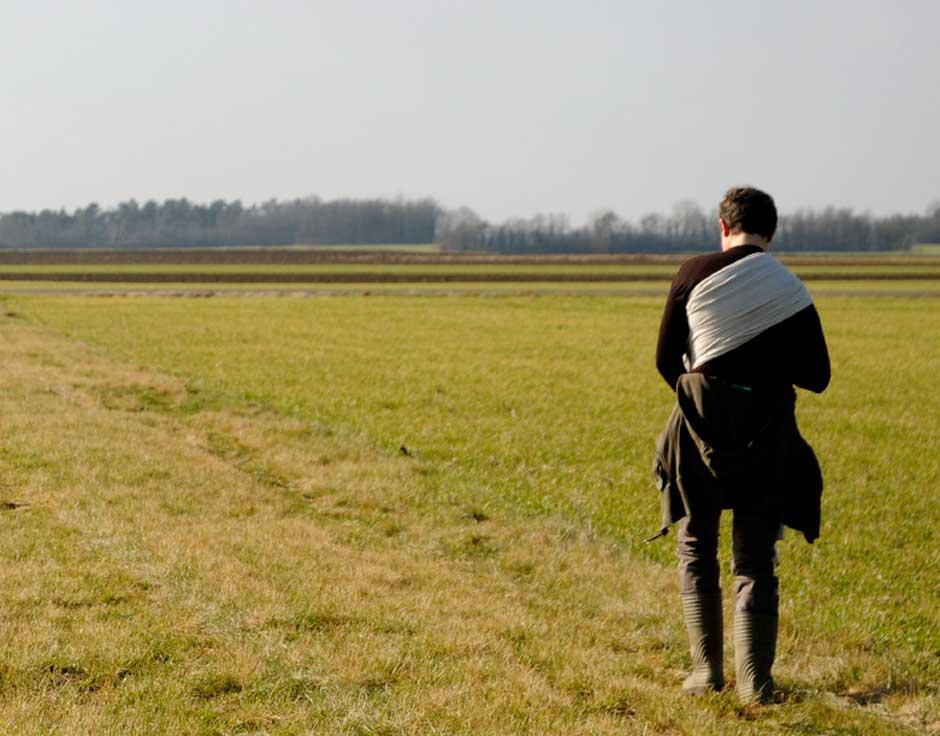 nature, champs, campagne, loiret